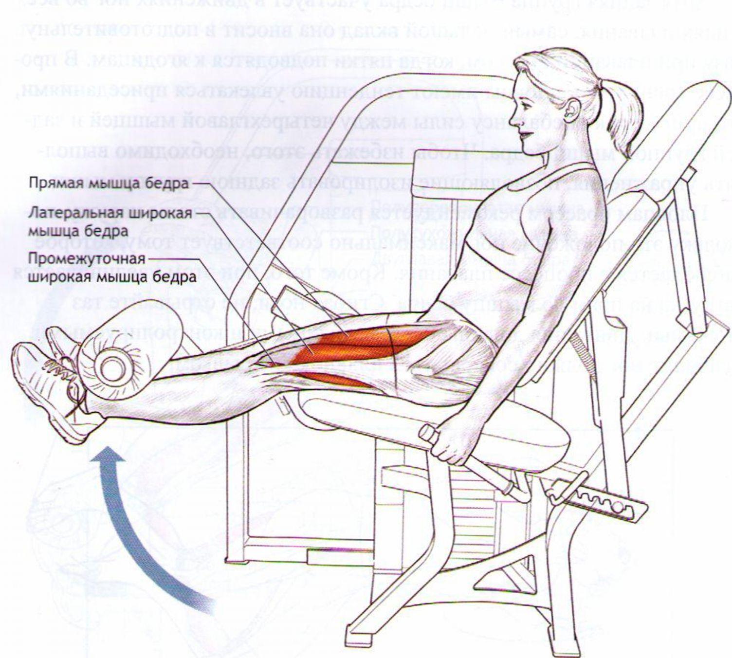 Разгибание ноги в коленном суставе младенец 1 месяц незрелый тазобедренный сустав